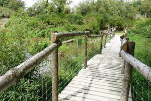 parc animalier dans l'Orne